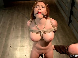 Huge soul take a seat suspended in hogtie